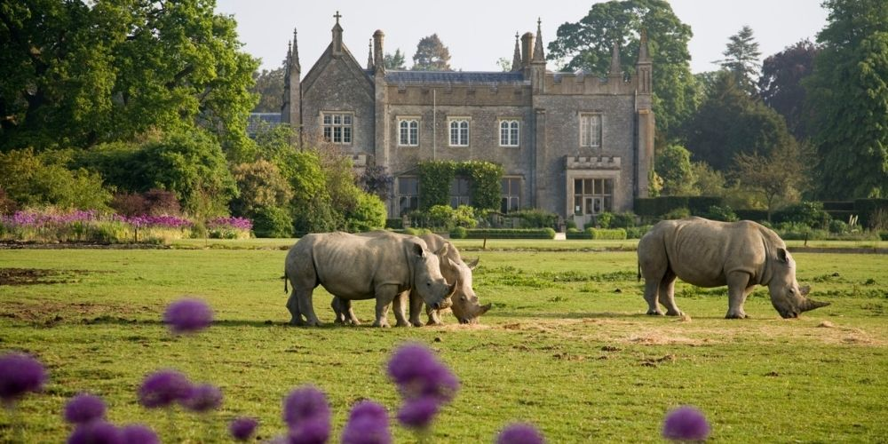 7-best-spots-in-The-Cotswolds-to-see-wildlife.jpg#asset:5550